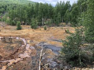 Влияние изливов из шахт Кизелбасса на экологию